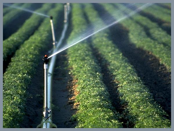 节水灌溉设备-微灌